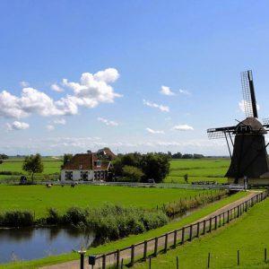Nyderlandai